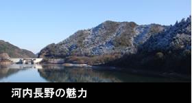 河内長野の魅力