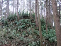 奥河内 石仏城 探検記(その4)