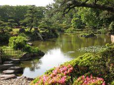 金剛寺の庭園① こんな風に楽しもう!! 【河内長野 こんなオモロイとこ!!】