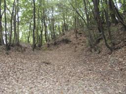 河内 烏帽子形城 探訪記⑤堀内散策と堀内障壁